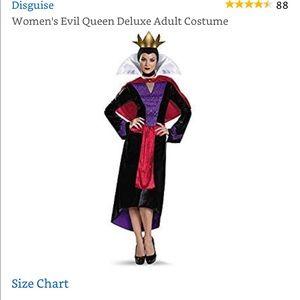 Women Disney Evil Queen Deluxe Adult Costume Sz S